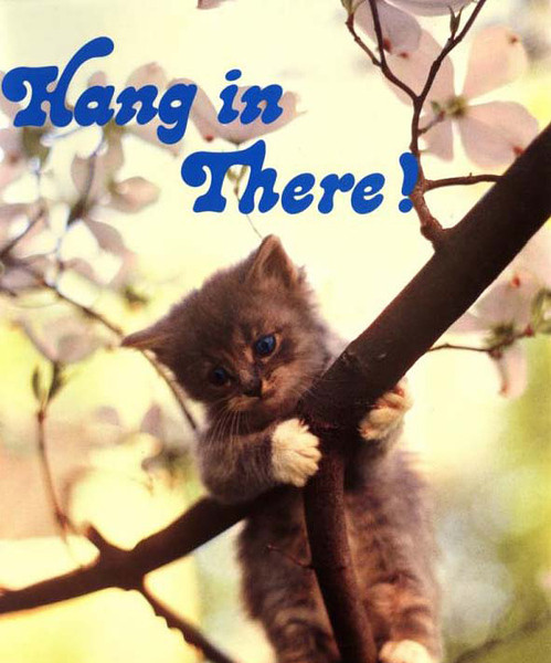 Important Annoucement: Hang in There