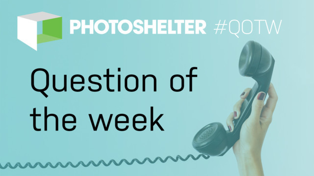 October's Roundup: Our Question of the Week Series