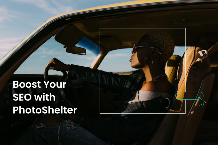 Increase Your Visibility with the PhotoShelter SEO Hub